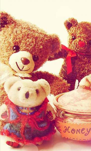 温馨泰迪可爱萌宠主题锁屏壁纸