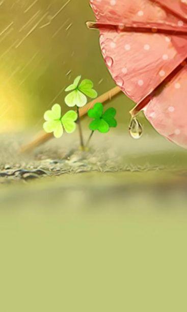 四叶草的幸福小清新简约锁屏壁纸